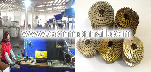 Yellow Coated Coil Wire Nails
