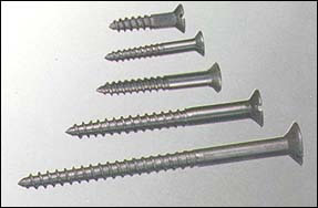 Galvanized Steel Screw Nails for Fixing Woods Uses