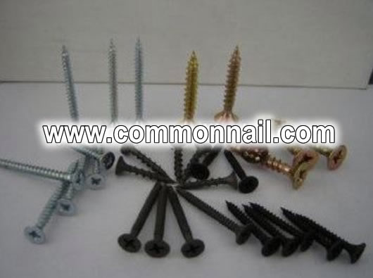 Coil Nails with Ring Shanks